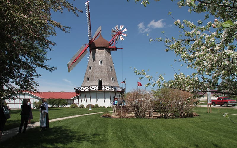 Danish-Windmill_ElkHorn1